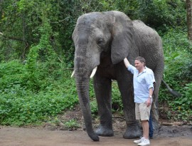 hazyview-elephant-sanctuary-11