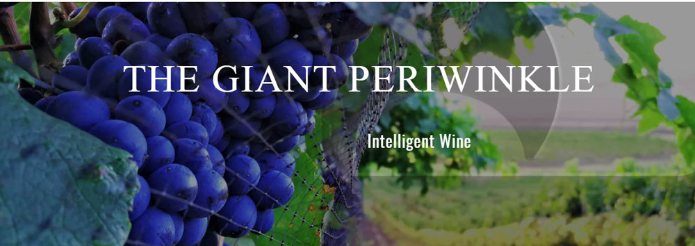The Periwinkle grapes