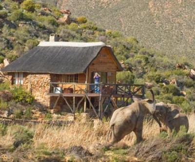 Visit Aquila Private Game Reserve & Spa, a Big 5 Safari Experience Just Under 2 Hours From Cape Town